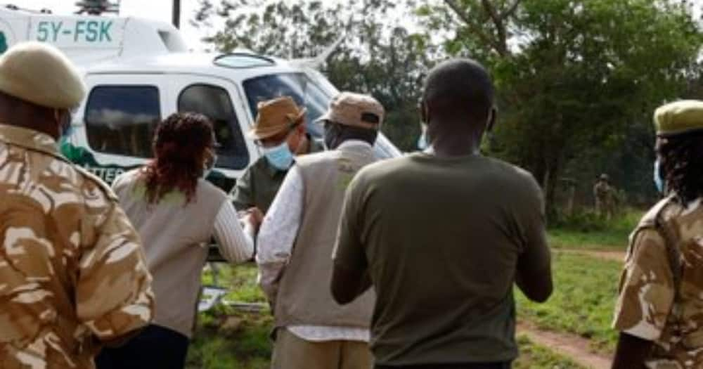 Count to Conserve: Gov't Launches First-Ever National Wildlife Census in Kenya