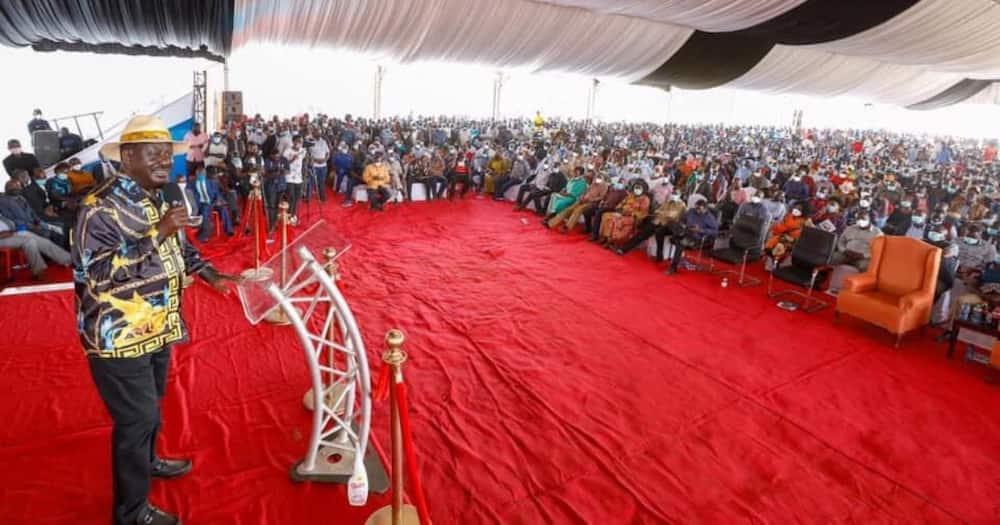 Raila Odinga said he has plans to win over Mt Kenya voters.