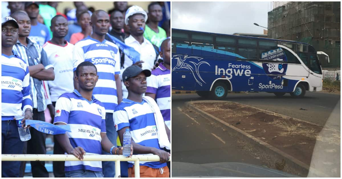 Financially-caged Ingwe risk losing team bus to auctioneers over unpaid hotel bills