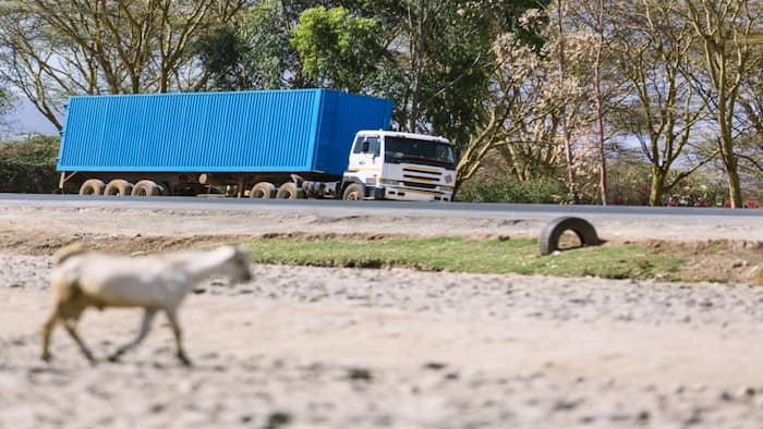 EAC States Urged to Provide Joint Security Escorts for Truck Drivers at Border Points