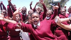 Analysis: Private Schools on Spot as Public Counterparts Shine in 2020 KCSE