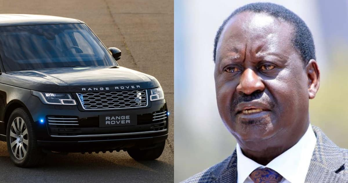Image result for railas range rover