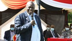 David Langat: Properties Owned by Public-Shy Billionaire Behind KSh 200b Eldoret Industrial Park
