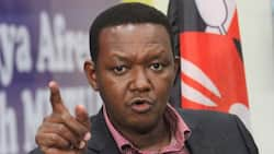 """Alfred Mutua Confesses Ukambani Leaders Clashed During Meeting with Uhuru: """"I was Embarrassed"""""""