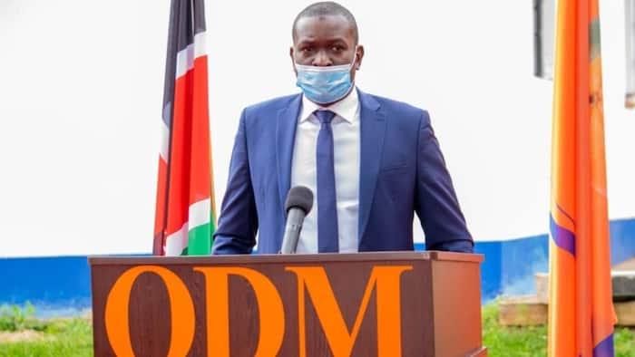"""Hamjui Jokes"": Edwin Sifuna Amtetea Junet Mohamed, Asema Ilikuwa Utani Tu"