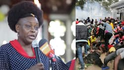 """MP Millie Odhiambo defends Raila from Kibra food stampede: """"He wasn't even there"""""""