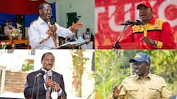 6 Richest Political Parties in Kenya, Their Owners and Membership