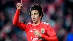Atletico Madrid yachomoa mfukoni KSh 15 bilioni kupata huduma za Joao Felix