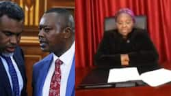 Maasai Mara heist: DPP Noordin Haji orders for arrest of university's VC Mary Walingo