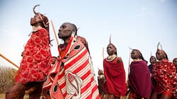 Top 10 best tribes to marry in Kenya: they will be the best partners
