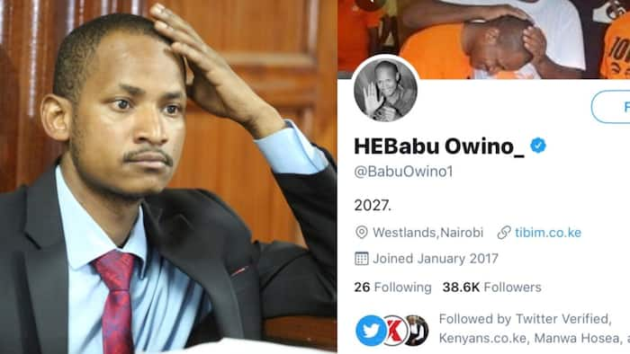 Babu Owino Parody Twitter Account Verified, MP Threatens to Leave if Real Account Doesn't Get Blue Badge