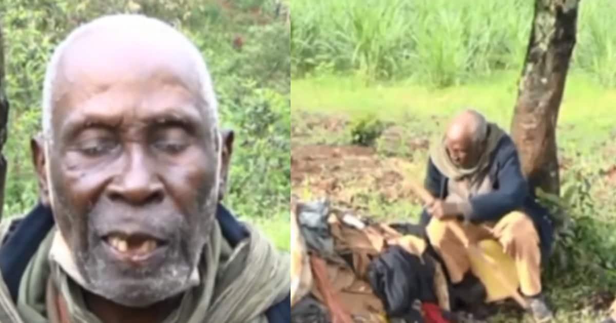 Mzee wa Miaka 79 Anayeishi Chini ya Mti Baada ya Mvua Kuharibu Nyumba Yake ▷ Kenya News