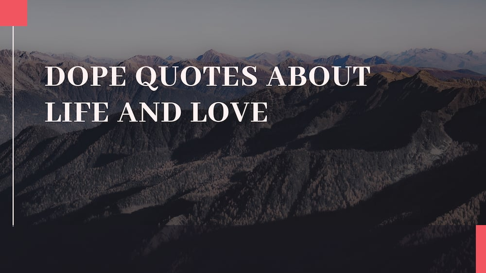 Dope quotes about life and love ▷ Tuko.co.ke