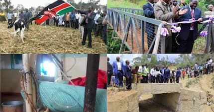 You have milked devolution right into your stomachs - Kenyans bash governors for dismal performance