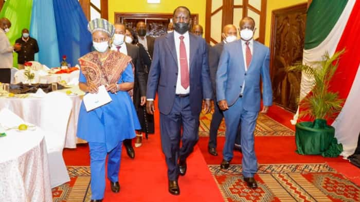 "Kiraitu Murungi Assures Raila of Mt Kenya Support: ""We'll Remove Crocodiles from the River"""
