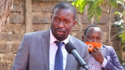 """Edwin Sifuna Chides Ruto's Team for Failing to Explain Bottom-Up Economic Model: """"Even Top Brains Can't"""""""