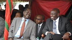 Raila anapaswa kuwa naibu wa William Ruto 2022, Johnson Muthama