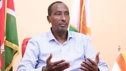 Mohammed Abdi: Aliyekuwa Gavana wa Wajir Anyanyuliwa Mkutanoni Nairobi