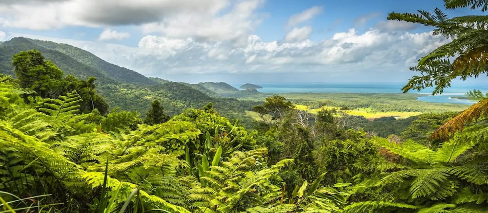 10 most dangerous jungles in the world