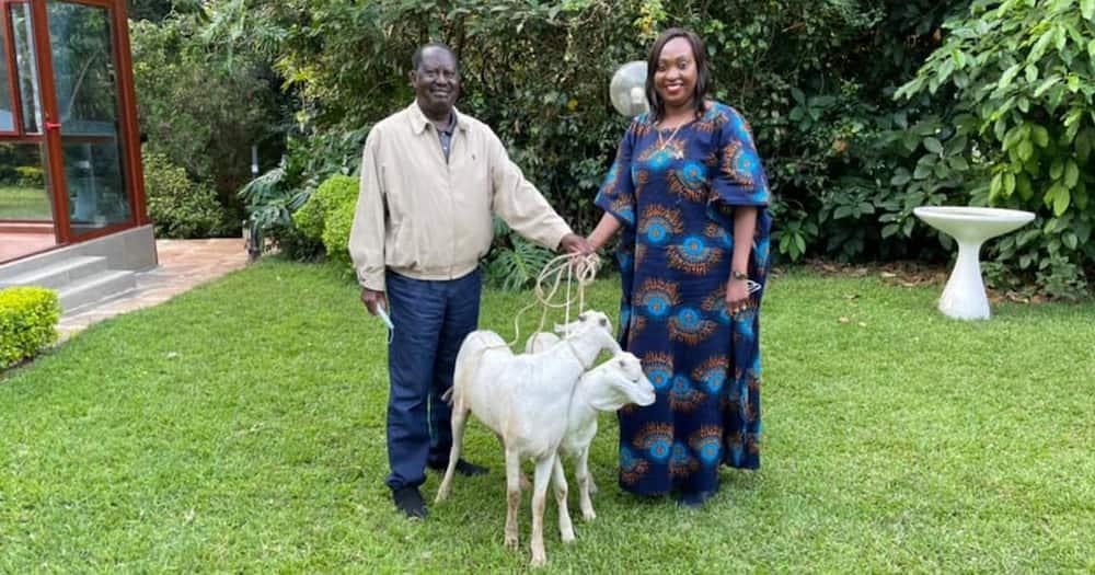 Nairobi Deputy Governor Visits Raila, Ida Odinga, Gifts them a Goat
