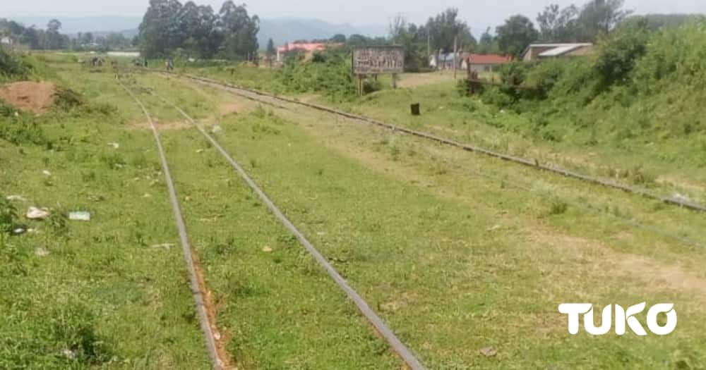 Webuye Pan Paper: Devastation, Lost Hope and Dwindling Fortunes of Once Promising Factory