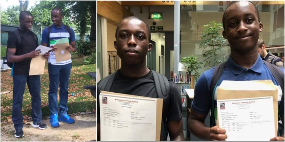 The twin brothers have been admitted to top Ivy League schools in the UK. Photo: Crabbimedia.