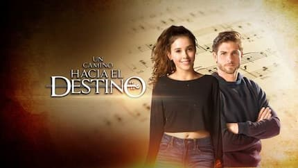 Road to Destiny: The story of your favourite telenovela in English