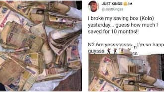 Which work do you do? Reactions as Man Shows Off KSh 700k after Saving in Piggy Bank for 10 Months