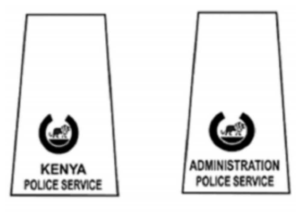 police ranks from lowest to highest