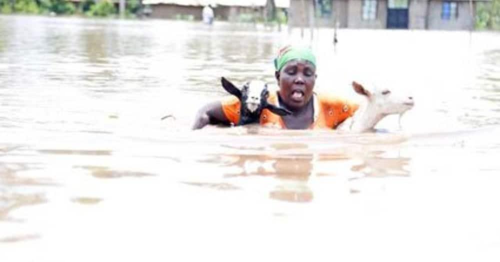 Mvua kubwa na mafuriko yatarajiwa Nairobi na Pwani, Idara ya hewa yaonya