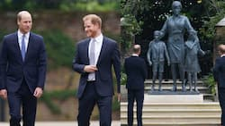 Prince Harry, William Put Feud Aside as They Reunite to Unveil Statue of Princess Diana at Kensington Palace