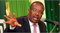 Co-op Bank CEO Gideon Muriuki Pockets Record KSh 260m Bonus for Protecting Shareholders' Returns