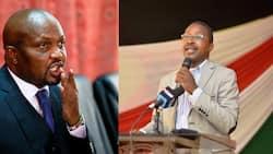 Majority of Kenyans Feel Moses Kuria and Mwangi Wa Iria Likely to Take over as Mt Kenya Kingpins