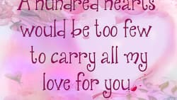 Top list of nice Valentine Day quotes for her and him