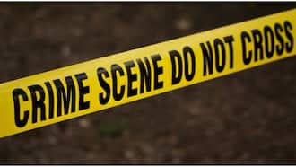 Bold Kiambu Man Fights 3 Robbers who Stormed His House at Night, Kills 1