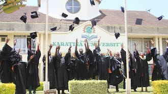 5 Kenyan Universities Collaborate with German Counterparts to Reduce Graduate Unemployment, Fund Innovators