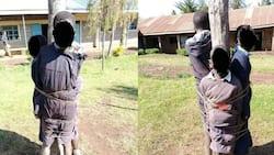 Shule Moja Laikipia Yajikuta Taabani kwa Kuwadhulumu Wanafunzi
