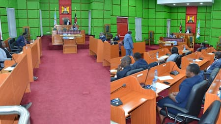 Bomet: Reactions as County Assembly Switches to Mother Tongue During Formal Session
