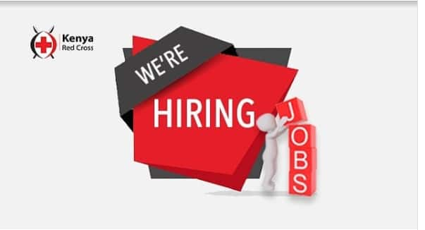 NGO jobs in Kenya - where to apply?