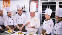 The 15 best culinary schools in America to enrol in 2021