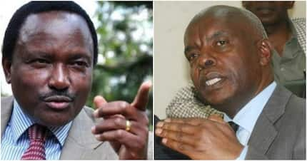 Kivutha Kibwana says he won't be pushed into supporting Kalonzo Musyoka