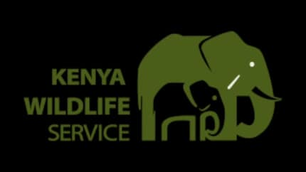 KWS park fees: What will you pay to enter parks and reserves in Kenya?