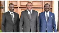 Opinion: Uhuru Kenyatta Shouldn't Endorse Raila, Let the Field Be Open