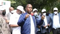 Junet Mohammed Asks IEBC to Prepare for BBI Referendum Despite Legal Setbacks