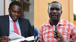 Nelson Havi claims ODM secretary-general Edwin Sifuna is after his life
