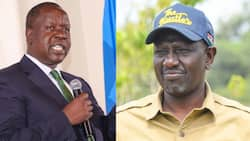 William Ruto Confirms He Owns 70% of Properties Listed by Fred Matiang'i