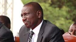 Jubilee to Kick William Ruto out of Party, Notifies Registrar of Political Parties