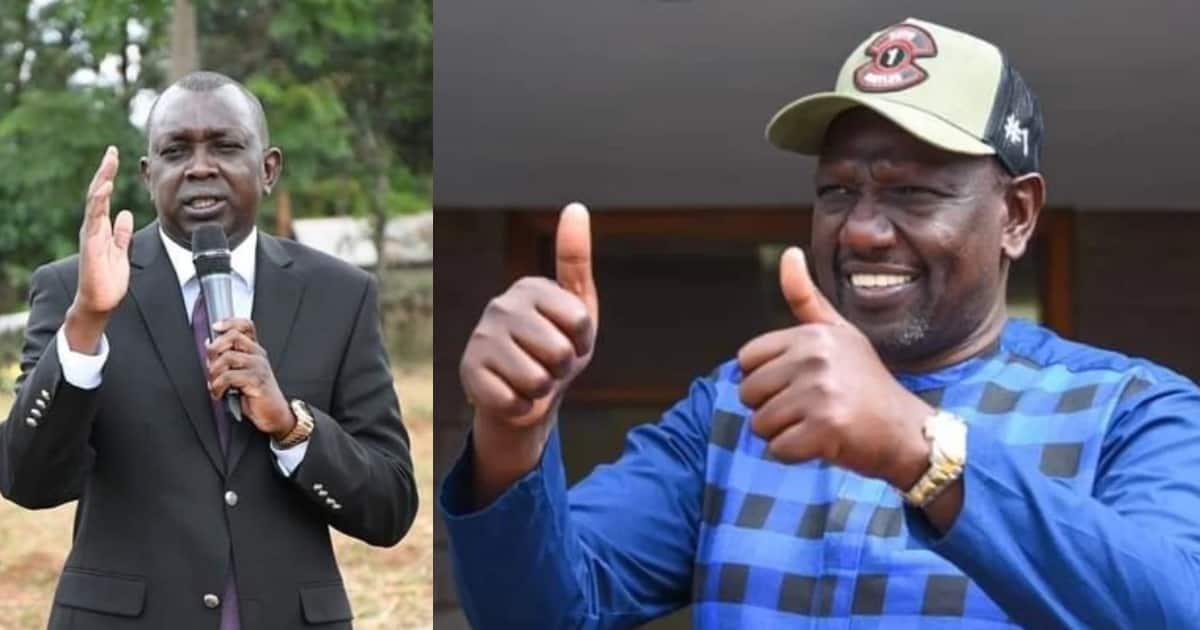 Harun Aydin: Oscar Sudi Says Turkish National Linked to Ruto's Foreign Trips is Fruit Farmer