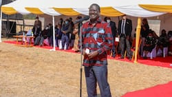 Raila Odinga Expresses Confidence BBI Train Still on Course after Appeal Hearing Closed