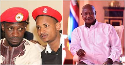 Museveni declares Babu Owino unwanted guest in Uganda